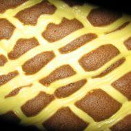 Prošívaná deka  koláč s tvarohem recept