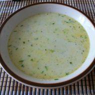 Brokolicovo-pórková polévka recept
