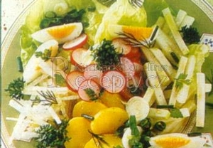 Letní zeleninový salát a bylinkami