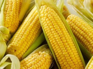 Dušená kukuřice