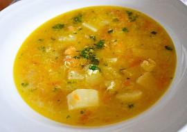 Polévka z mrkvy (Horňácko) recept