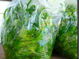 Mražený mangold (na zimu) recept
