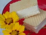Zmrzlina ze Salka recept