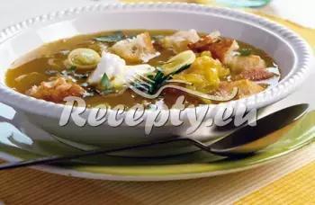 Polévka z vepřového jazyka recept  polévky