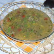 Polévka z kachních drobů recept