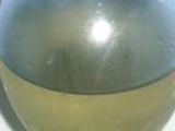 Zázvorový sirup recept