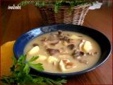Polévka z pravých hříbků recept