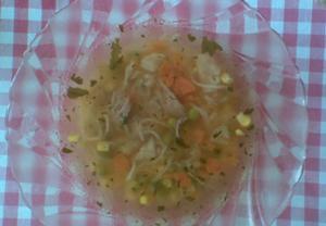 Krůtí nudlová polévka