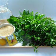 Domácí meduňkový sirup recept