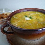 Jemná rybí polévka 1 recept