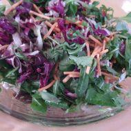 Míchaný salát se zázvorem recept