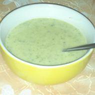 Krémová brokolicová polévka 1 recept