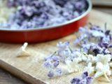 Kandované jedlé květy: šeřík recept