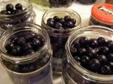 Jeřabinový kompot recept