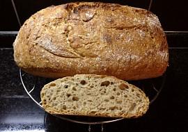 Domácí chleba bez hnětení v 2.0 (s droždím nebo kváskem) recept ...