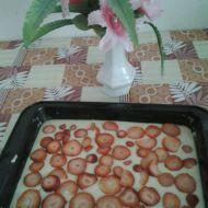 Hrníčková buchta s ovocem recept