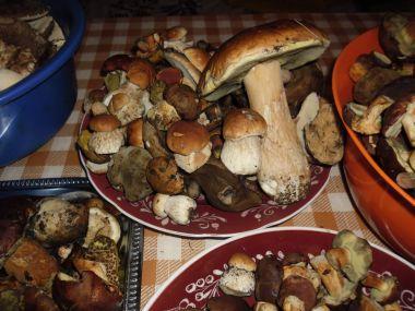 Smetanová houbová omáčka s paprikou