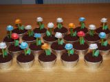 Muffiny Květináče recept