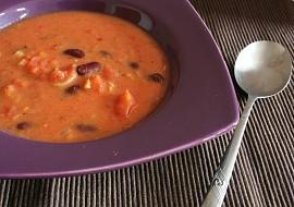 Kořeněná rajčatová polévka s kokosovým mlékem a fazolemi recept ...