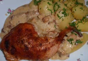 Hříbkové kuře (králík) v sýrovém výpeku