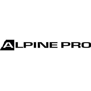 Alpine Pro Leták