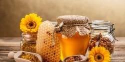 Zajímavosti o medu: může se dávat do horkého čaje?