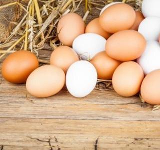 Co vlastně víte o vejcích?