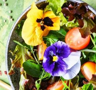 Jarní salát s jedlými květy