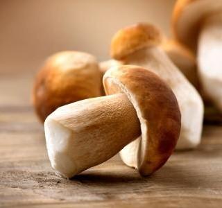 Nakládané houby se zeleninou