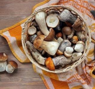 Party houbové koláčky