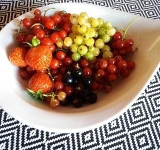 Letní zahrada plná ovoce – nevyčerpatelná zásobárna vitamínů, minerálů i stopových prvků