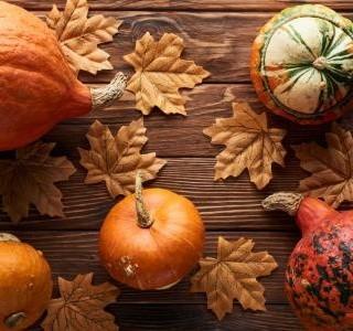 Nastávající podzim hlásí čas dýní