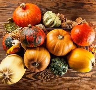 Průvodce dýněmi a co z nich připravit. Sezóna této zeleniny právě vrcholí!